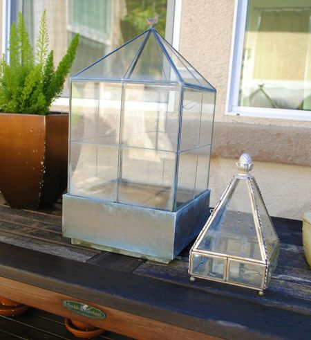 Terrarium Fix DIY A