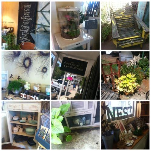 The Antique Gardener Collage
